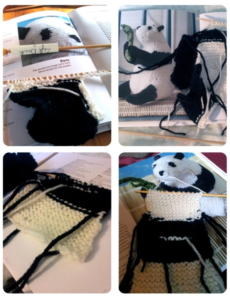 Panda Knitting In Progress